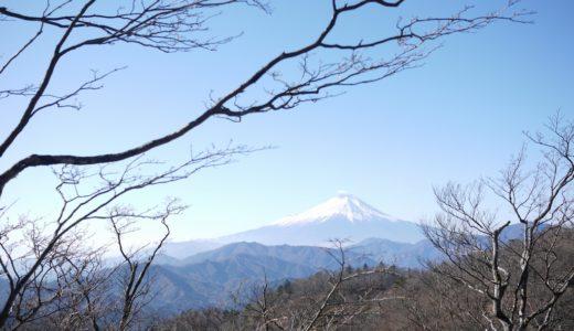 加入道山~大室山:静寂に包まれた西丹沢の奥地を登る