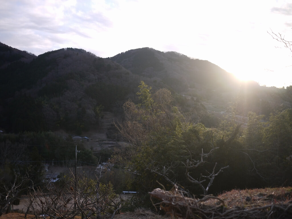 シダンゴ山