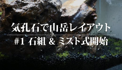 気孔石で山岳レイアウト水槽 #1:石組&ミスト式開始