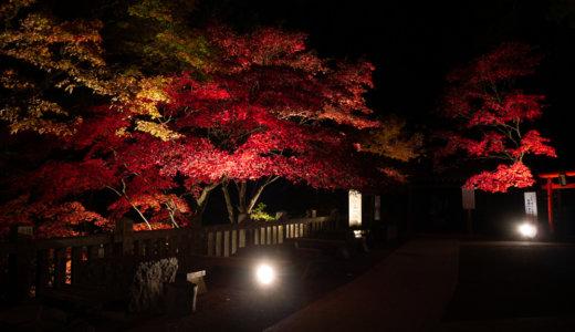 丹沢大山:ケーブルカーを使わないで登って帰りに紅葉ライトアップを見る