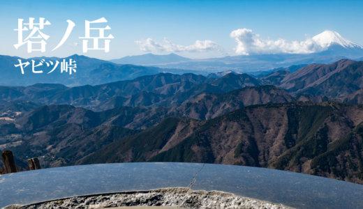 塔ノ岳:ヤビツ峠から表尾根を縦走して大倉尾根を下る