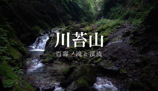 川苔山:川乗橋から登って百壽ノ滝に癒される