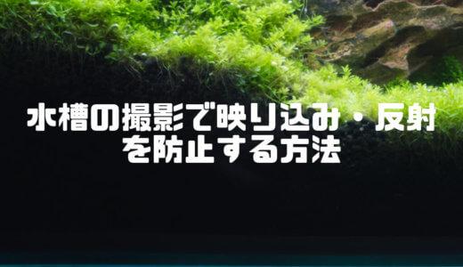 水槽の撮影で映り込み・反射を防止する方法