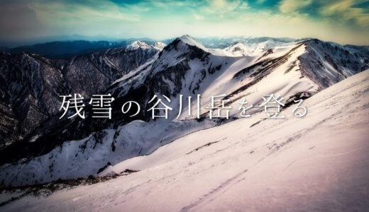 谷川岳:残雪期に天神尾根を登る