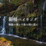 箱根の滝:飛龍の滝と千条の滝を巡るハイキングコース